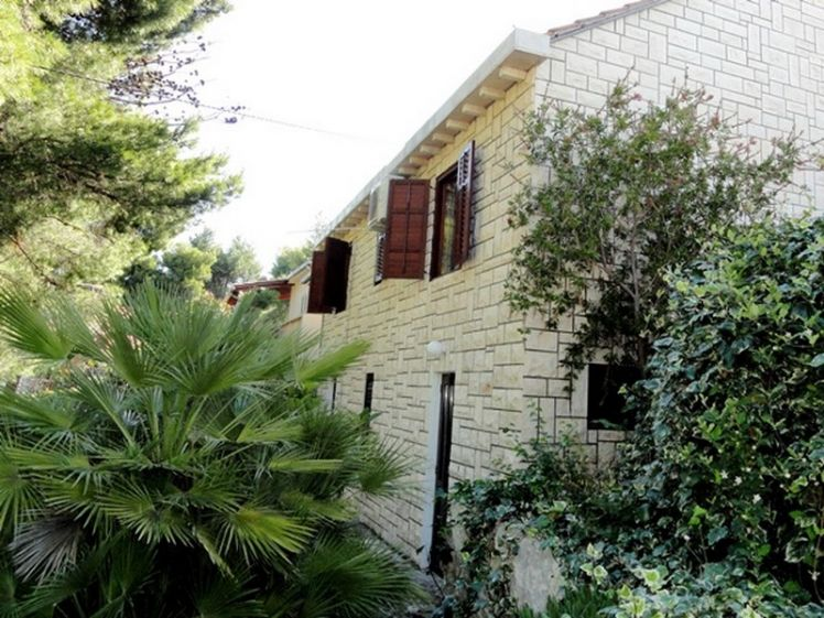 Brac house